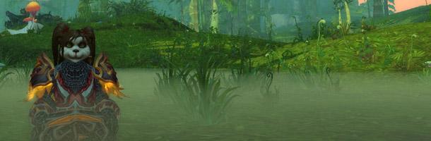 Effets de brume en Pandarie