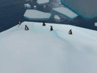 Image de 2011-11-26-cdf