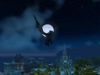 Image de aile-de-nuit-obsidienne