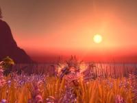Image de aurore-eternelle