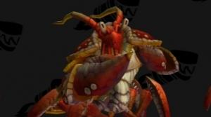Image de crabes