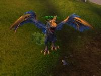 Image de corbeau de l'effroi
