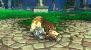 Image de druide-ourse