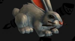 Image de lapins