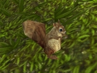 Image de mascottes-nuts