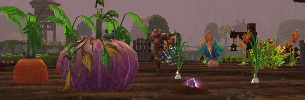 Récoltez vos légumes chaque matin