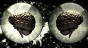 World of Warcraft : bénéfique pour notre cerveau
