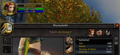 Mamyladin, plus de 600 points de vie au niveau 3 !