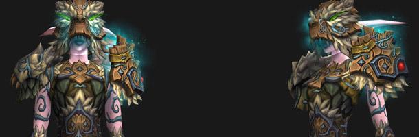 T14 Druide sur Elfe de la nuit (ensemble 2)