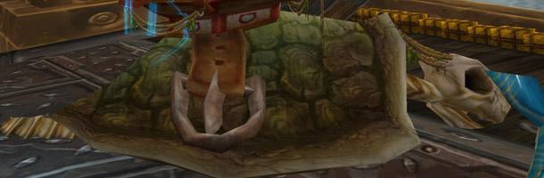 Cette tortue géante se trouve sur le bateau des Mille pointes