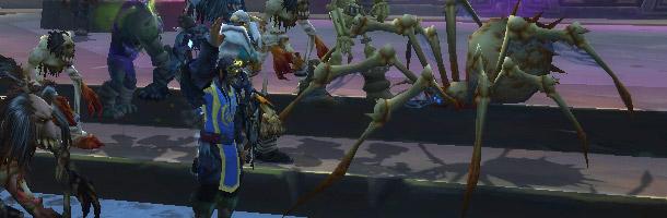 Une araignée se prend d'affection pour un Chevalier de la Mort