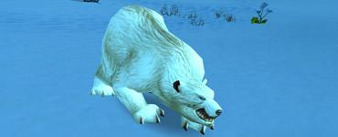 Bjarn l'ours blanc de Dun Morogh