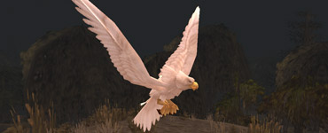 Heronis du Marécage d'Âprefange