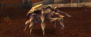 Quirix des Maleterres de l'Est