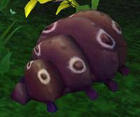 Kawi le Goinfre