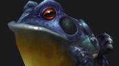 Les nouvelles grenouilles de WoW
