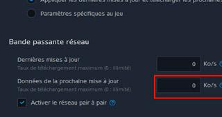 Vous pouvez paramétrer la vitesse de téléchargement du patch