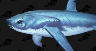 La mascotte requin abandonné