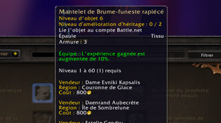 L'interface en détails du patch 6.1