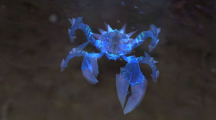 Mascotte carapace translucide