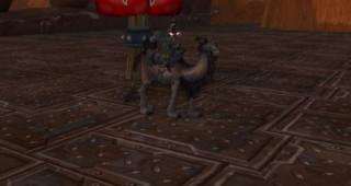 Rênes de dromadaire brun - Monture World of Warcraft