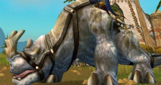 Kodo blanc - Monture World of Warcraft