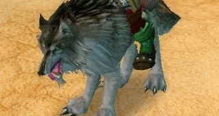 Cor du loup redoutable - Monture World of Warcraft