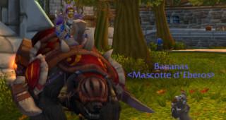 Ours de guerre amani - Monture World of Warcraft