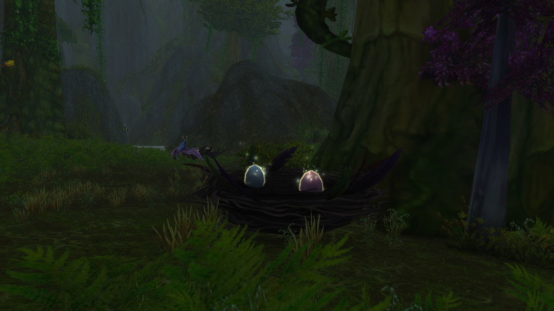 Un nid d'oeufs aigreplume