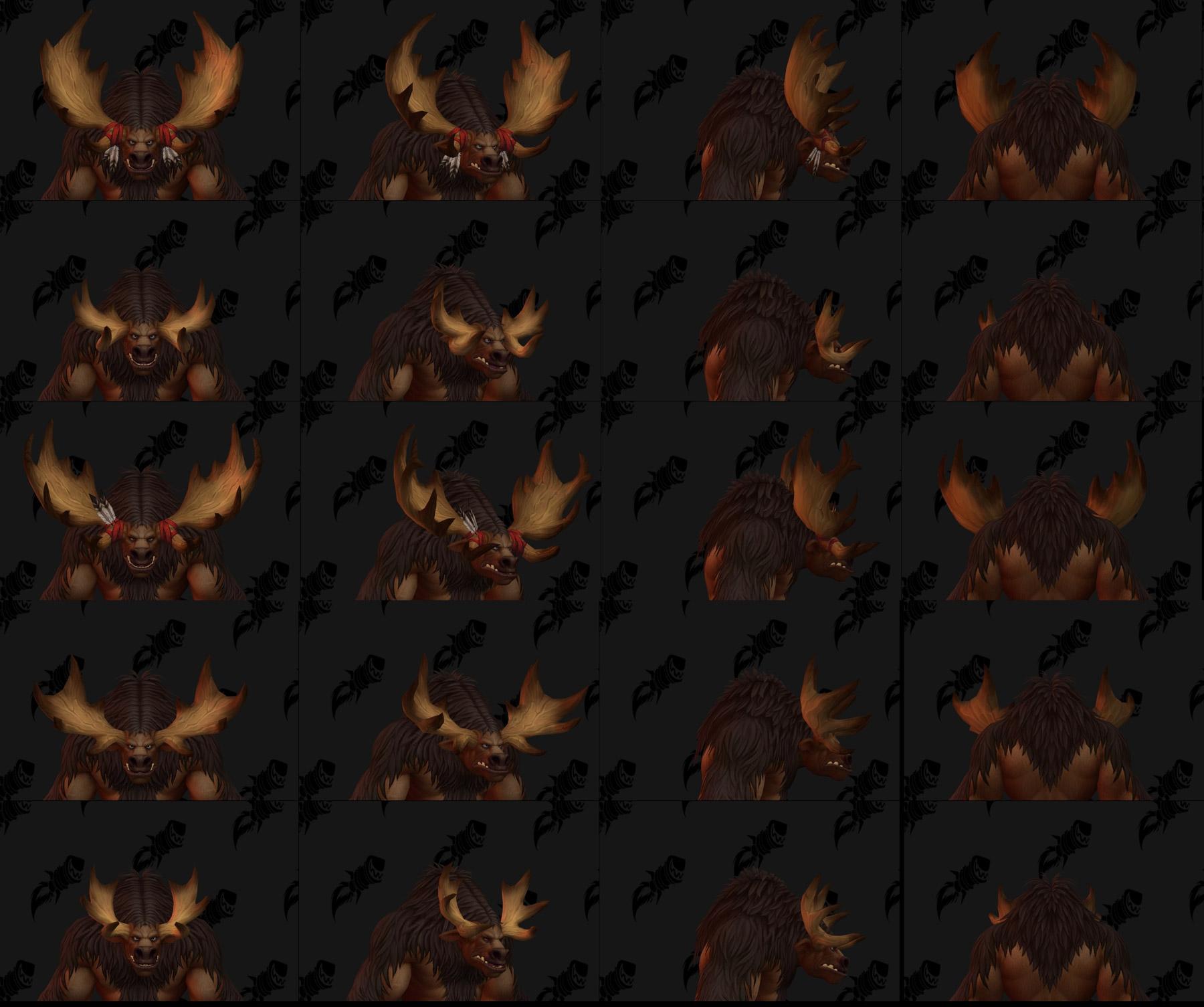 Formes des cornes des Taurens de Haut-Roc (Homme)