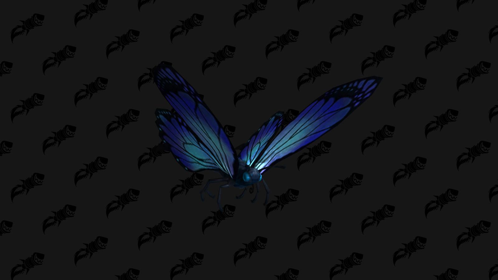 Papillon en bocal, mascotte BFA qui s'achète contre des charmes polis