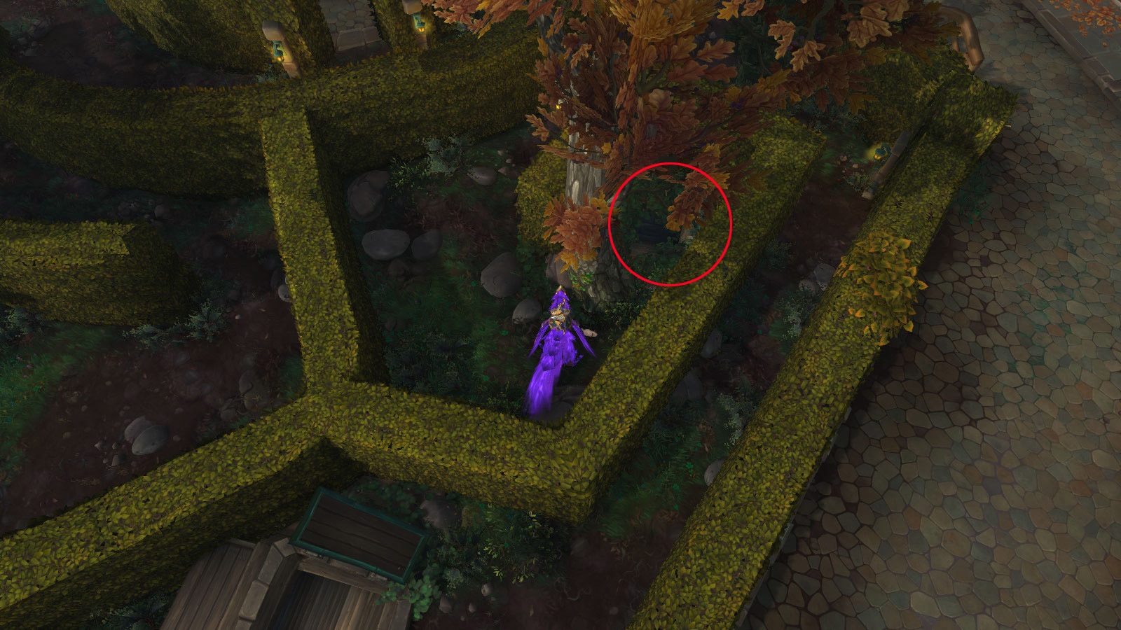 Longez le labyrinthe de haies de la Place de l'unité à Boralus
