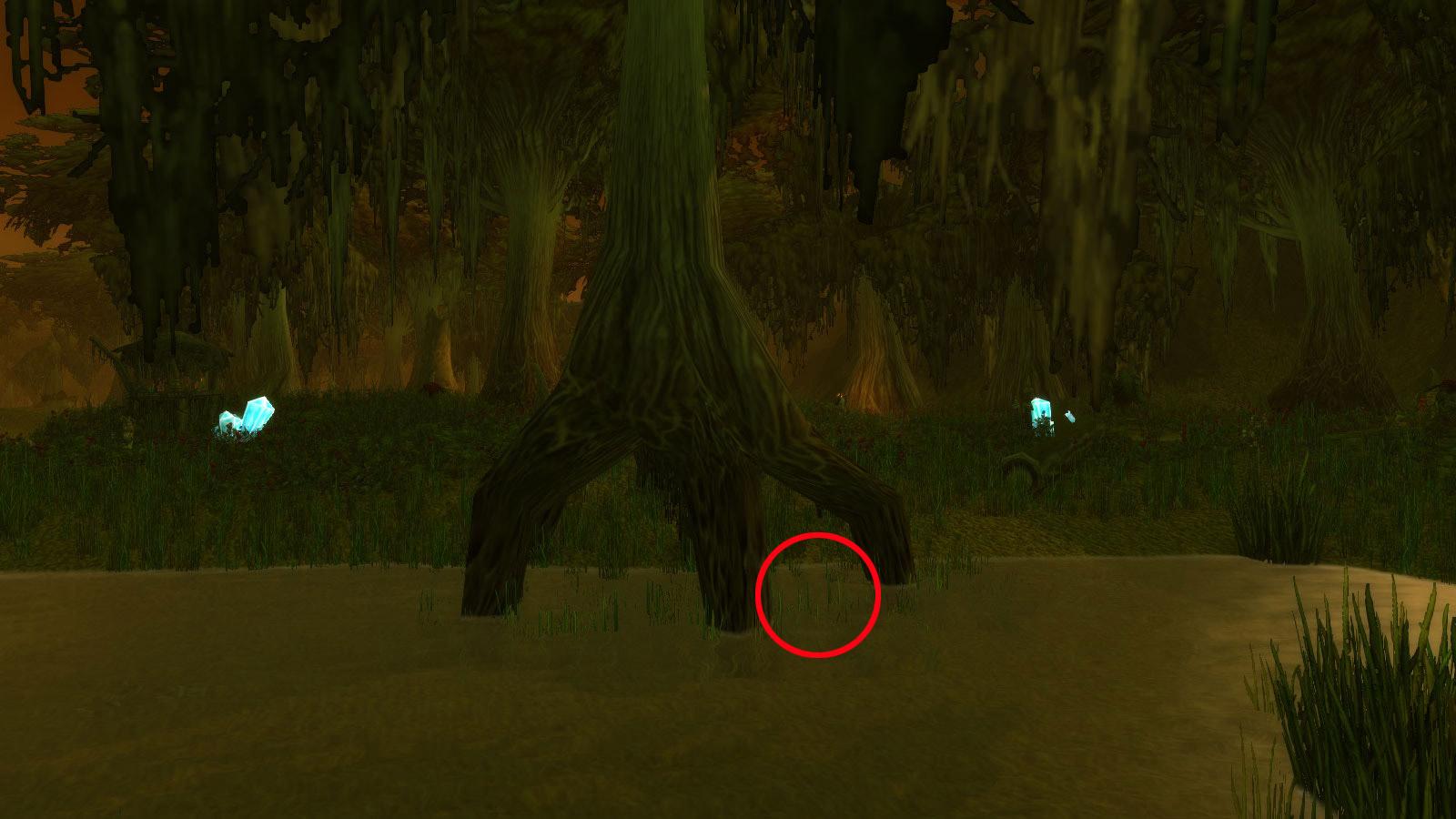 L'indice est dans l'eau sous la racine d'un arbre