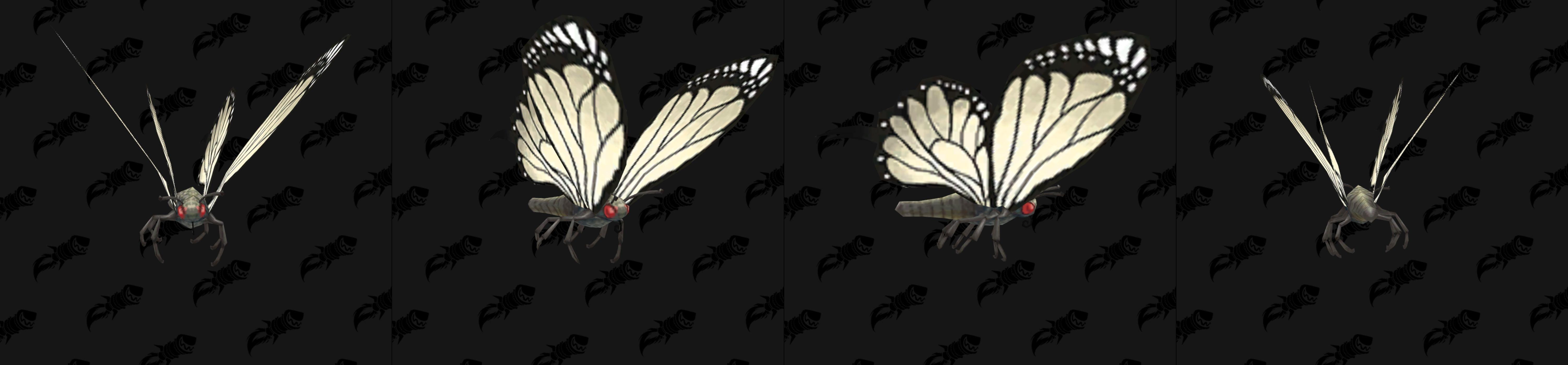 Modèle de mascotte papillon blanc