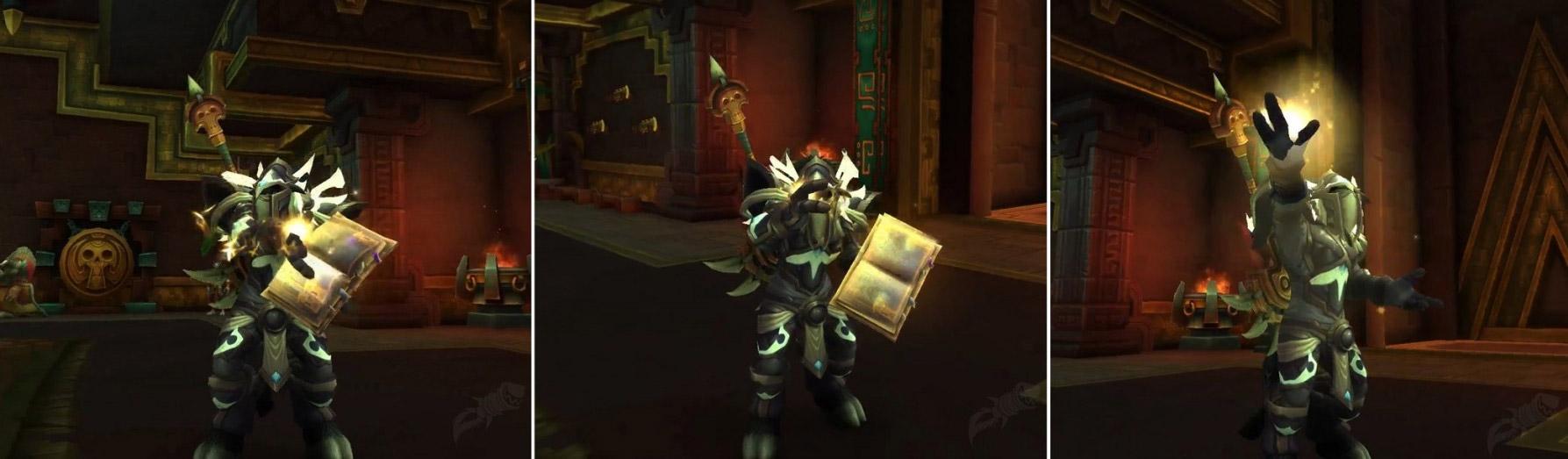 Le Paladin tient désormais un livre entre ses mains pendant l'incantation