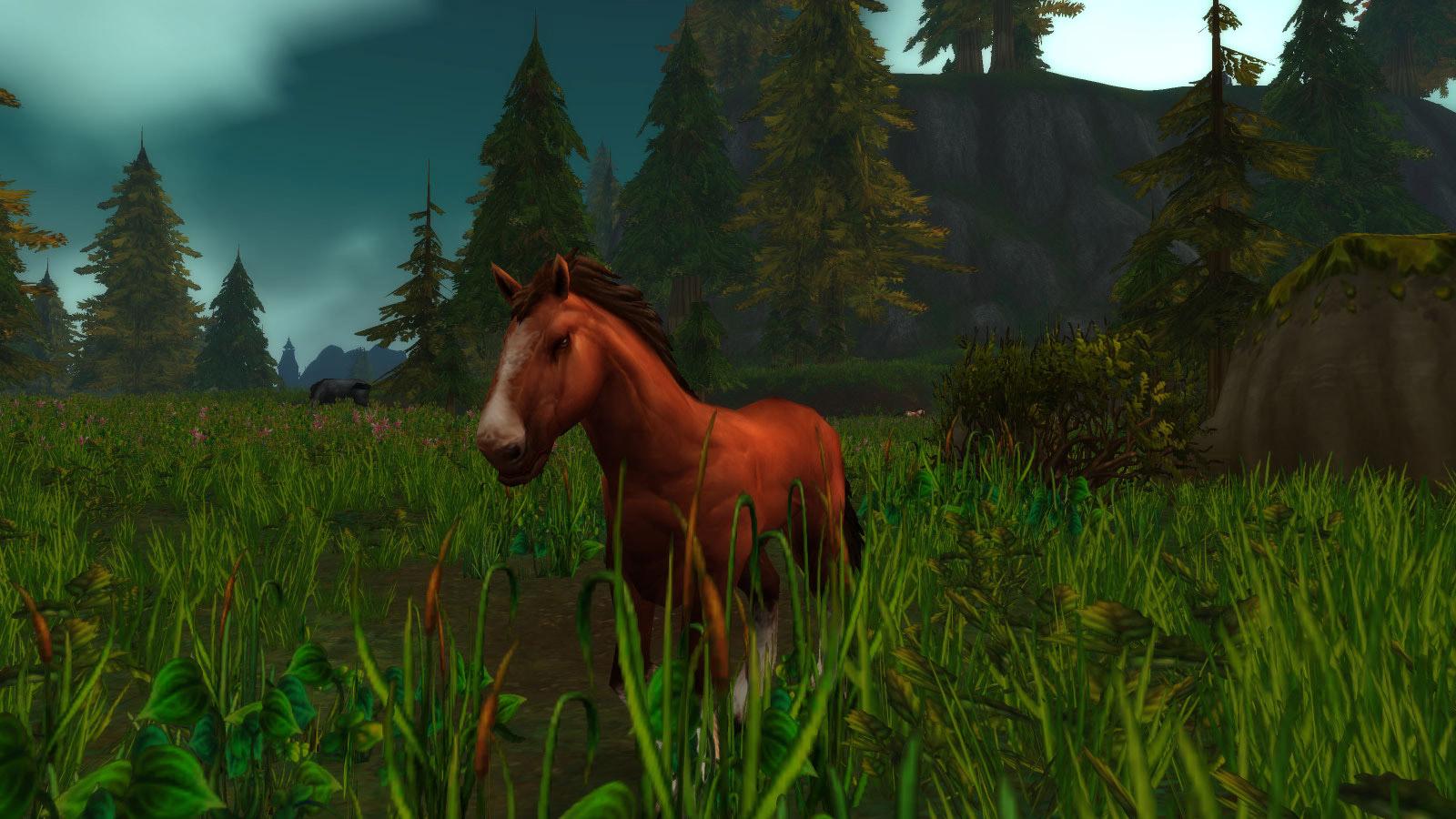 Modèle cheval au patch 7.3.5