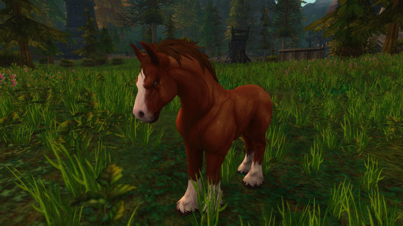 Modèle cheval au patch 8.0