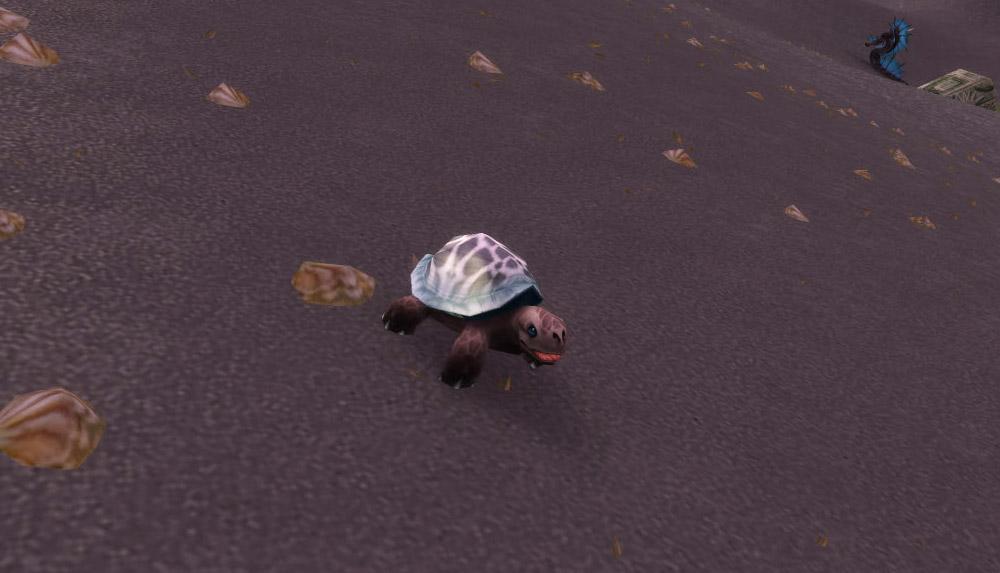 Modèle de bébé tortue au patch 7.3.5