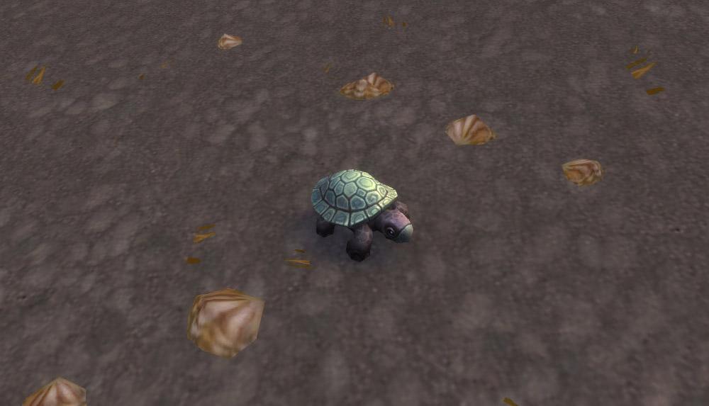 Modèle de bébé tortue au patch 8.0