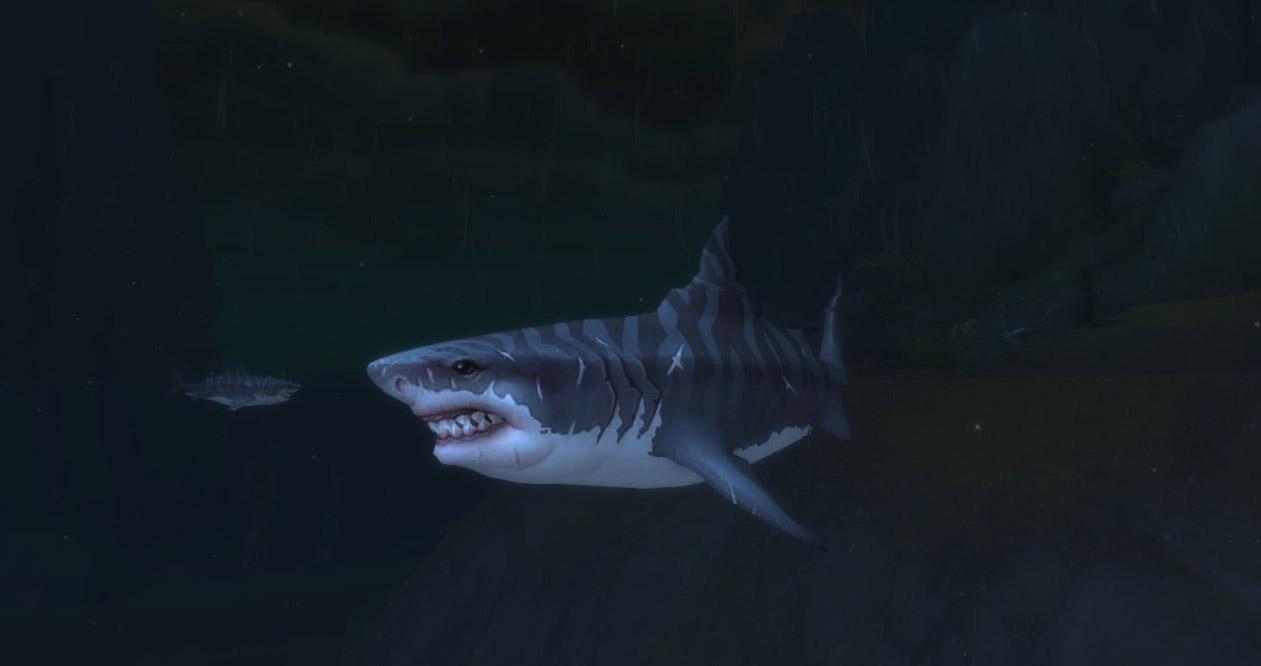Modèle jeune requin au patch 8.0