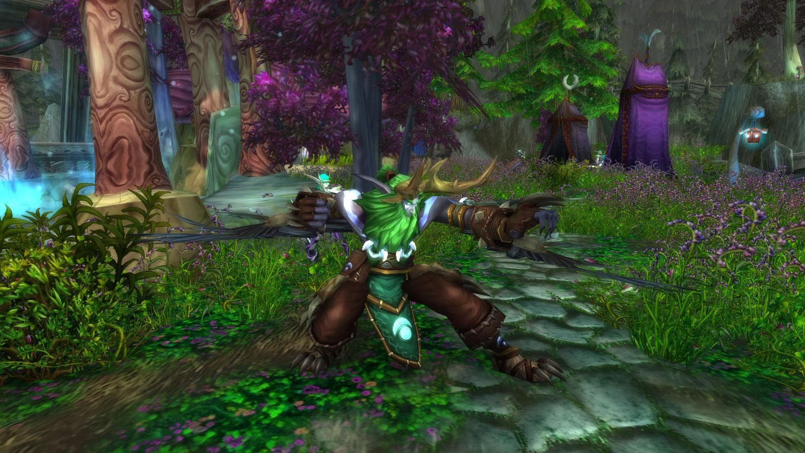 Malfurion rejoint Lor'danel afin d'affronter les troupes de la Horde