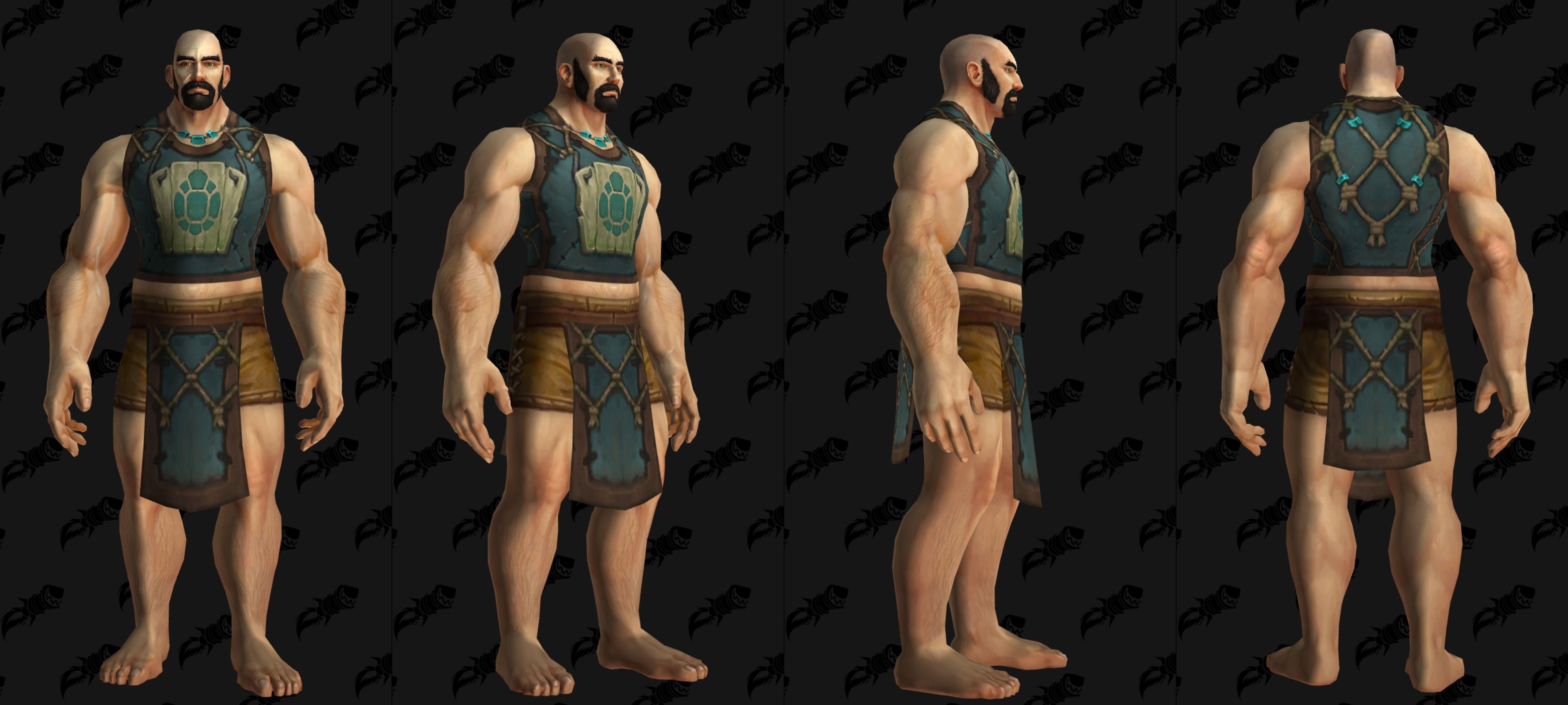 Tabard faction Chercheur Tortollan