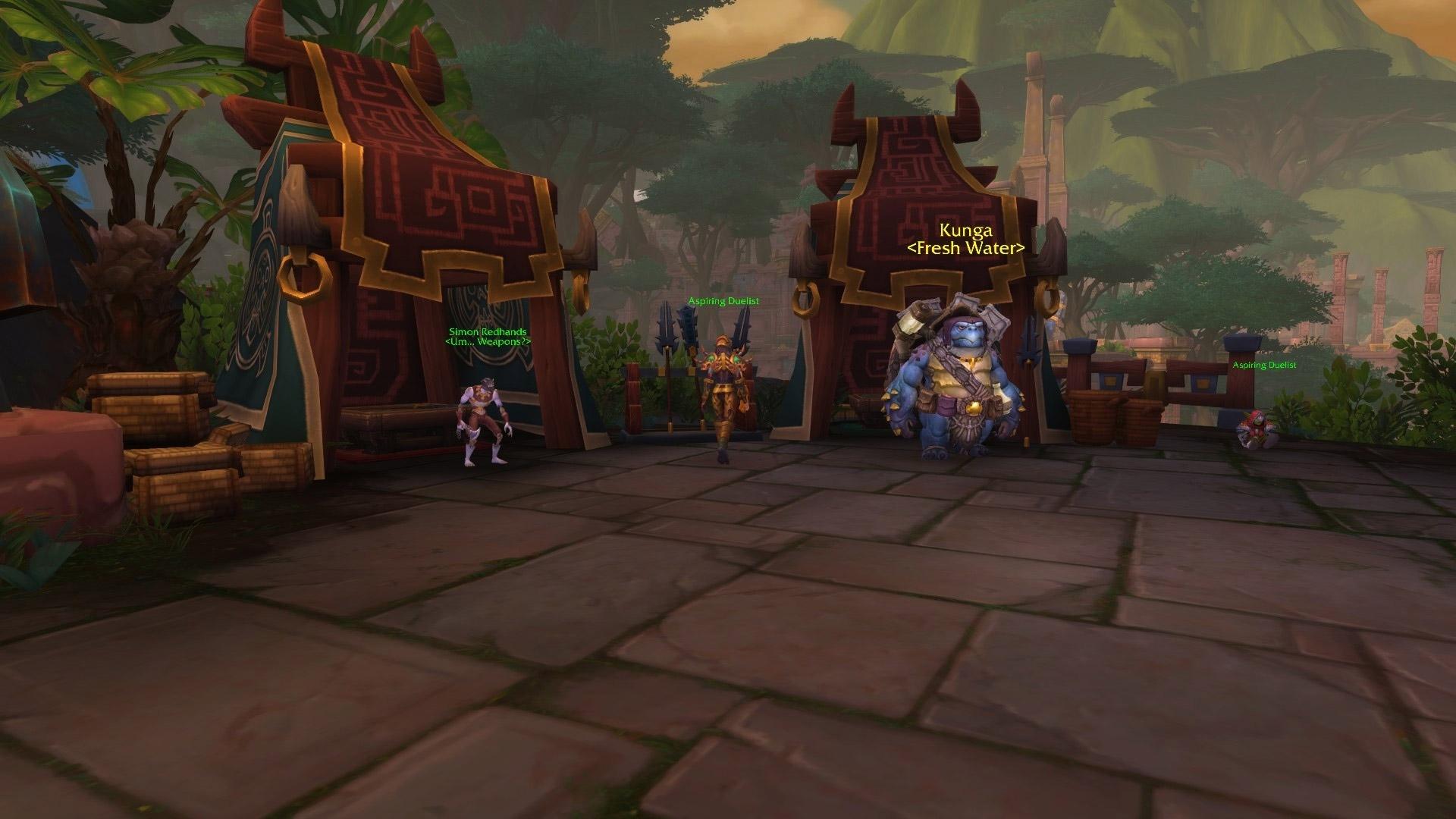 PNJ de la guilde des duellistes