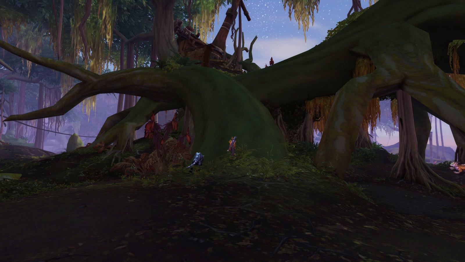 Montez sur la racine au pied de l'arbre