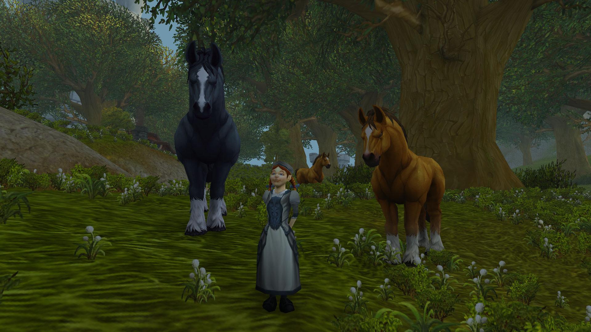 Vendeuse des chevaux des montagnes