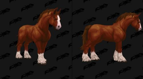 Image de Montures chevaux Battle for Azeroth
