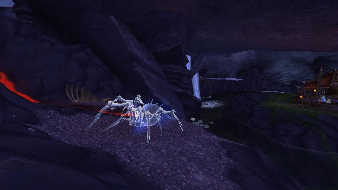 L'élite rare Arachnis