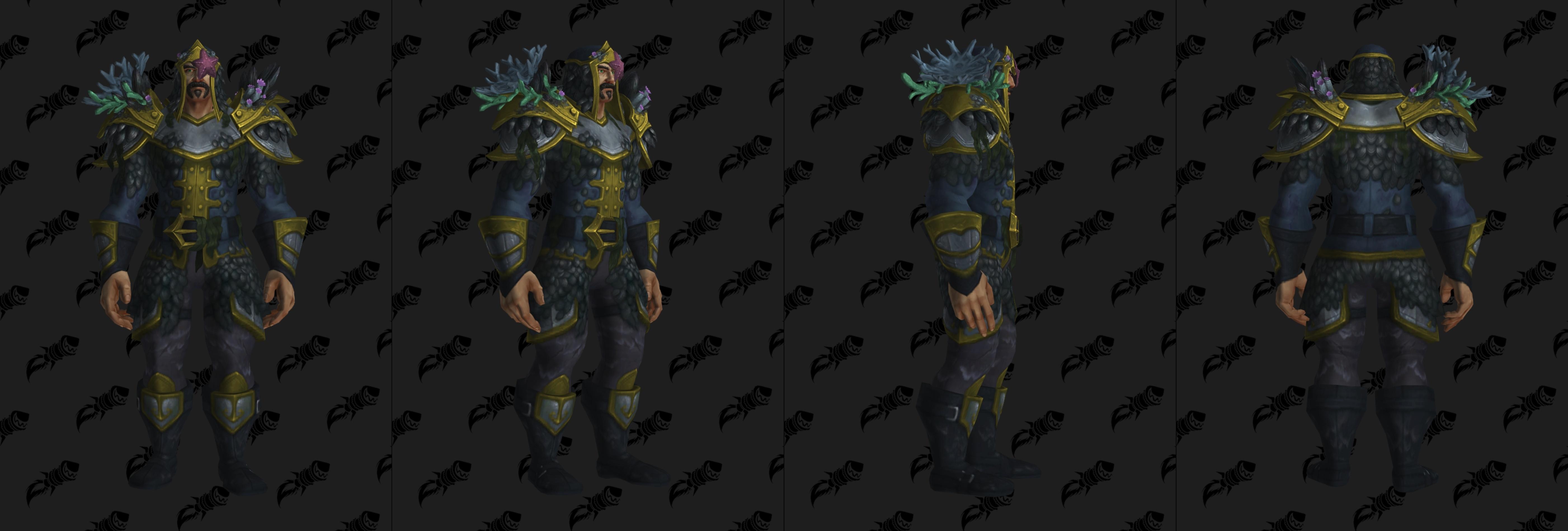 Set d'armure Aspirant en mailles (Alliance)