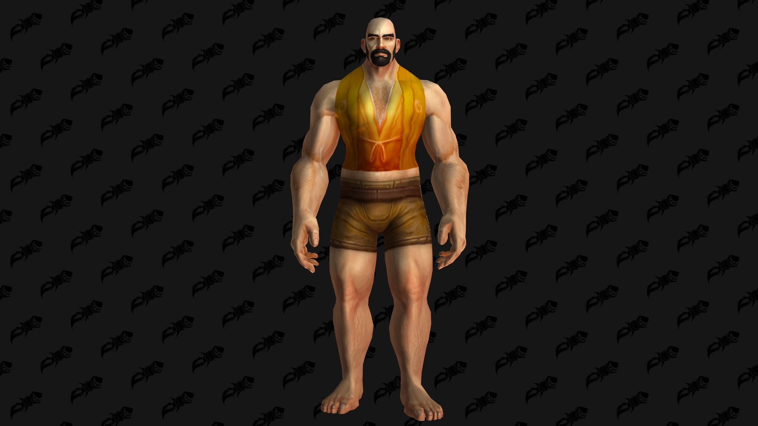 Modèle de chemise au patch 8.1.5