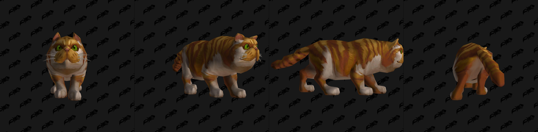Modèle de mascotte Void-scarred Cat (patch 8.3)